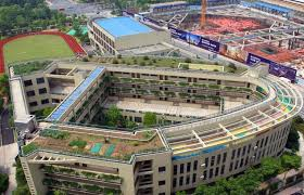 Small Picture Organic rooftop farm grows atop an elementary school in China
