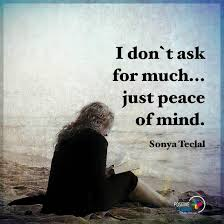 Mind Quotes Delectable I Don't Ask For Much Just Peace Of Mind Quote 48 Quotes