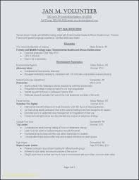 Resume Example Professional Templates For Word It Samples In Format