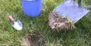 Cornell Cooperative Extension How To Take A Soil Sample
