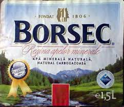 Image result for borsec