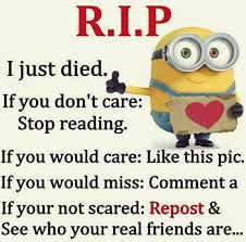 Cute Funny Quotes Delectable Funny Minions From Charlotte 484848 PM Saturday 48 August 48