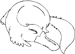 Free Animal Birds Coloring Sheets For Kindergarten 494011