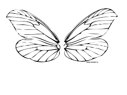 Coloring dragonfly wings