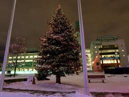 Ottawa City Hall Christmas tree in Ottawa. Tony Caldwell Tony Caldwell /  Postmedia Network
