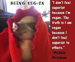 Vegan Quotes Adorable Vegan Quotes Meat Meets Vegan