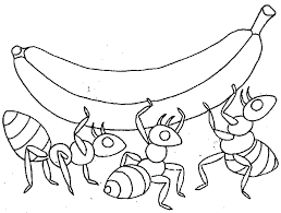 Ants Coloring Pages Free Printable Ants Coloring Pages