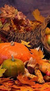 Thanksgiving Corn Wallpapers - Top Free ...