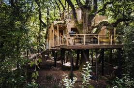 Luxurious tree house House Interior Worlds Most Luxurious Tree House Hispotion Worlds Most Luxurious Tree House Hispotion