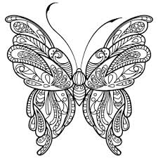 Butterfly Coloring Pages Coloring Book For Adults Androidpit Forum