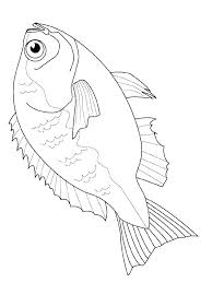 Betta Fish Coloring Page Fish Coloring Pages Gallery Fish Coloring