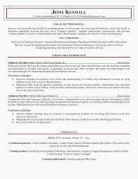 Child Care Resume Awesome Awesome Examples Resumes Ecologist Resume