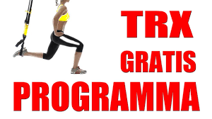 trx manuale italiano pdf user guide manual that easy to read