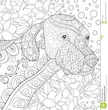 Adult Coloring Page A Cute Dog On The Floral Background For Relaxing