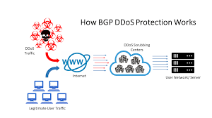 DDoS Network Protection Service – BGP Network