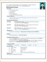 Resume Format In Microsoft Word Beautiful Normal Resume Format