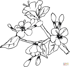 Small Picture Easter Spring Flowers coloring page Free Printable Coloring Pages