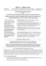Functional Executive Resume Executive Resume Format Template Winning ...