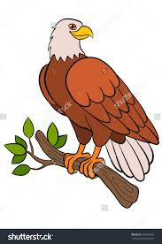 Small Picture Eagle Pictures For Kids Coloring Page