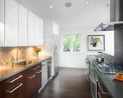 example of a mid sized trendy galley dark wood floor enclosed kitchen design in santa