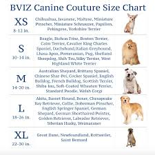 Big Dog Size Chart Extra Large Dog Collars Of Fortuny