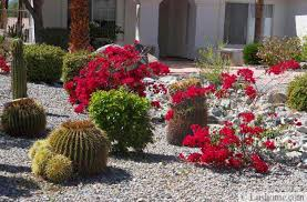 Small Picture Desert Landscaping Ideas to Save Water and Create Low Maintenance