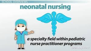 best colleges for neonatal nursing