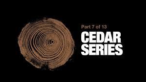 installing western red cedar