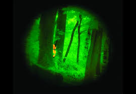 Image result for night vision aerial person