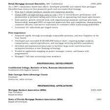 Resume Form Template Resume Form Template 81