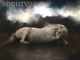 NyghtVision Volume 10 #3 - Summer Edition 2020 - Fine Art