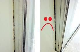 getting rid of mold in bathroom. Getting Rid Of Mold In Bathroom E