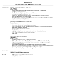 Customer Service Assistant Resume Samples Velvet Jobs