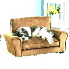 best couch for dog owners t furniture with dogs for dog owners fancy couch living sofas