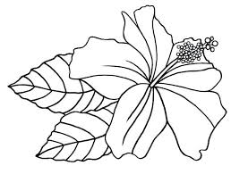 Coloring Pages Flowers Big Flower Coloring Pages Big Flower Coloring