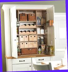 free standing kitchen storage cabinets. Wonderful Storage Fullsize Of Astonishing Pantry Storage Cabinet Lowes  Canada Wealth Free Standing Kitchen  In Cabinets I