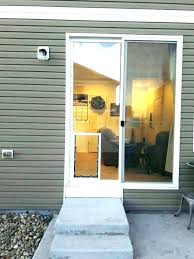 good looking custom dog doors denver