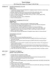 Chargeback Analyst Resume Samples Velvet Jobs