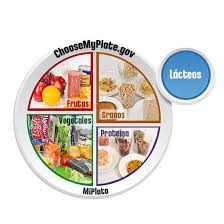 food plate in spanish. Contemporary Food MyPlate Clear Window Cling 12 And Food Plate In Spanish E