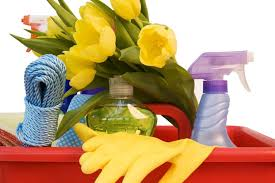 Image result for image spring clean