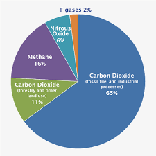 Nitrous Oxide Chart Pie Chart That Shows Different Types Of Gases 65 Percent Is