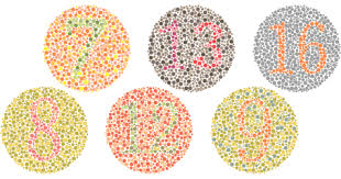 Colour Blindness Chart Colour Blind Tests A Vision Perception Test All About Vision