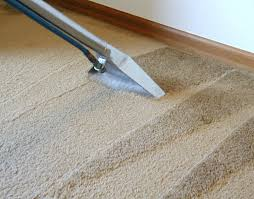 carpet steam cleaner. best carpet cleaning orlando fl steam cleaner
