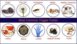 Homeopathic Remedy For Fish Allergy - Images Lobster and Fish