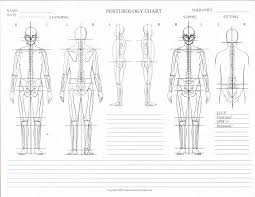 10 Posturology Chart Blank Posture Posture Chart Pdf