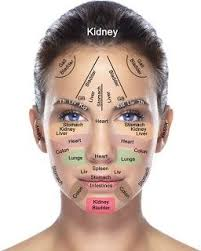 Face Mapping What Your Skin Says Acupressure Reflexology