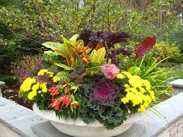 Small Picture 257 best 2017 OUTDOOR PLANTERS images on Pinterest Gardening