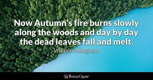 Fire Quotes Enchanting Fire Quotes BrainyQuote