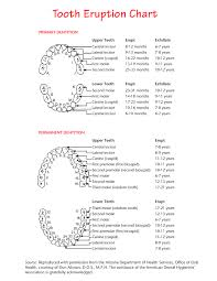 Teething Chart Babies Pediatric Oral Health Management Tooth Eruption Chart