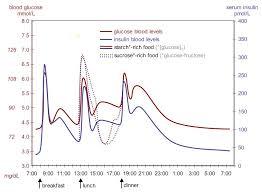 Self Monitoring Measurement Of Blood Glucose Smbg Dr